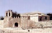 amazigh 1195